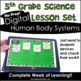 Human Body Systems Science and Literacy Lesson Set (TEKS & NGSS)