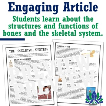 Human Body Systems: Skeletal System & Bones Reading & Worksheet NGSS MS-LS1-3