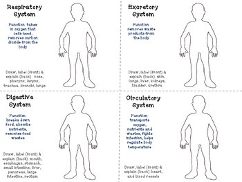 Human Body Systems Task Cards (fill-in)