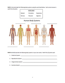 Human Body Systems Test & Answer Key