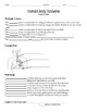 Human Body Systems Test & Study Guide