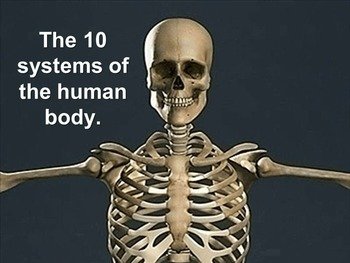 Human Body Systems: The 11 Systems of the Human Body (animations)