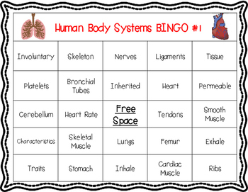 Human Body Systems Vocabulary BINGO Review Game