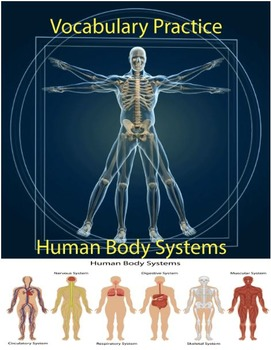 Human Body Systems: Vocabulary Practice