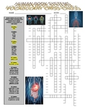 Human Body Systems Vocabulary Puzzle