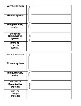 Human Body Systems Vocabulary and Quiz