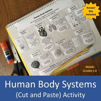 Human Body Systems (cut and paste) Activity