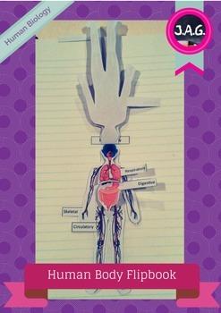 Human Body Systems - flip chart