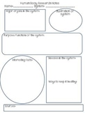 Human Body Systems research notes graphic organizer