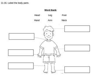 Human Body Test
