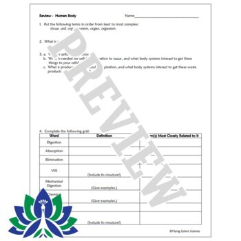 Human Body Systems Review Worksheet (middle school) NGSS MS-LS1-3