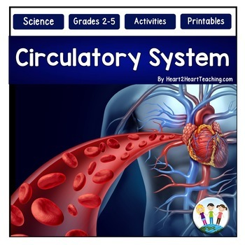 Human Body - The Circulatory System - Our Heart & Blood {Activities & Flip Book}