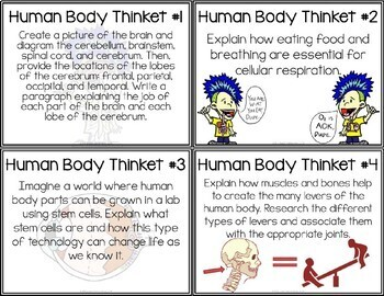Human Body Systems - Task Cards