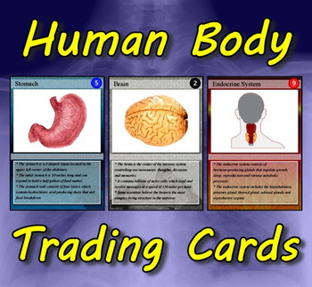 Human Body Trading Cards