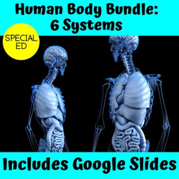Human Body Ultimate Bundle for Special Education