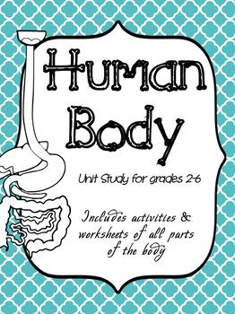 Human Body Unit