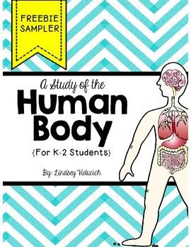 Human Body Unit (Free Preview)