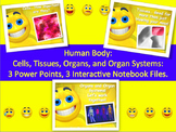 Human Body Unit PowerPoints and Interactive Notebook Bundle