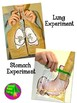 Human Body Unit Sampler