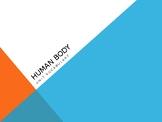 Human Body Vocabulary
