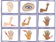 Human Body Vocabulary Pack - Word Wall and Matching Games