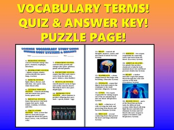 Human Body Vocabulary Quiz (Study Guide and Puzzle Page)