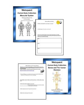 Human Body Webquest Bundle