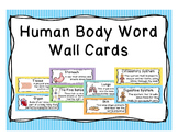 Human Body Word Wall