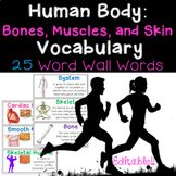 Human Body Word Wall: Bones, Muscles, and Skin and Student Vocabulary Page