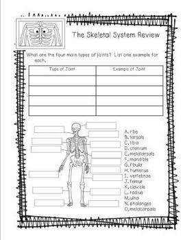 Human Body Workbook for 3rd, 4th, 5th