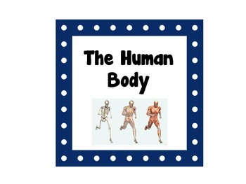 Human Body and Systems Word Wall