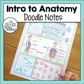 Human Body or Intro to Anatomy Doodle Notes by Gnature with Gnat
