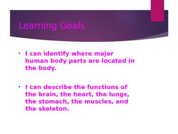 Human Body power Point