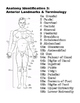 Human Body, the Coloring Book- Terms