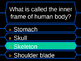 Human Body_Millionaire Game