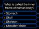 Human Body_Millionaire Game