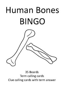 Human Bones BINGO!