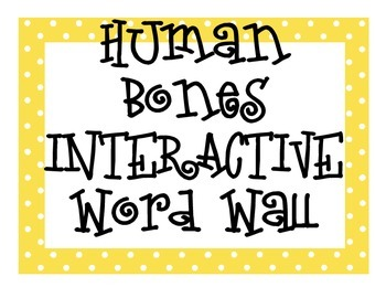 Human Bones INTERACTIVE Word Wall