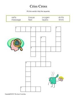 Human Brain Activity Fun