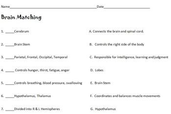 Human Brain Matching with KEY