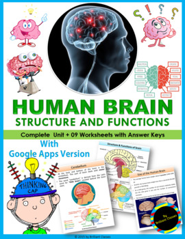 Human Brain : Structure & Functions - Unit with Worksheets / Activities