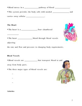 Human Circulation - Transport Notes Outline Lesson Plan