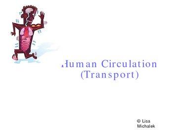 Human Circulation - Transport PowerPoint Presentation Lesson Plan
