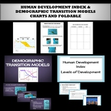 Human Development Index and the Demographic Transition Model