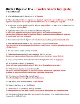 Human Digestion Homework Assignment