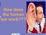 Human Ear SmartBoard Lesson