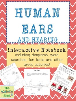 Human Ears Interactive Notebook