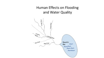 Human Effects on Flooding and Water Quality
