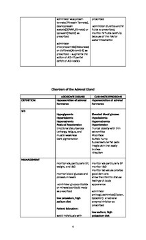 Human Endocrine System Review Notes and Handout
