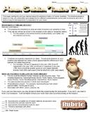 Human Evolution Timeline Project
